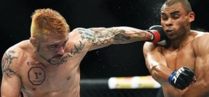 DIVULGAÇÃO UFC