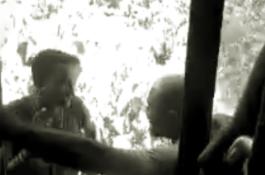 Captura de Tela (150)